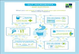 Gut microbiota and nutrition
